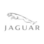 Markenlogo__0014_0233_h_jaguar-logo_14